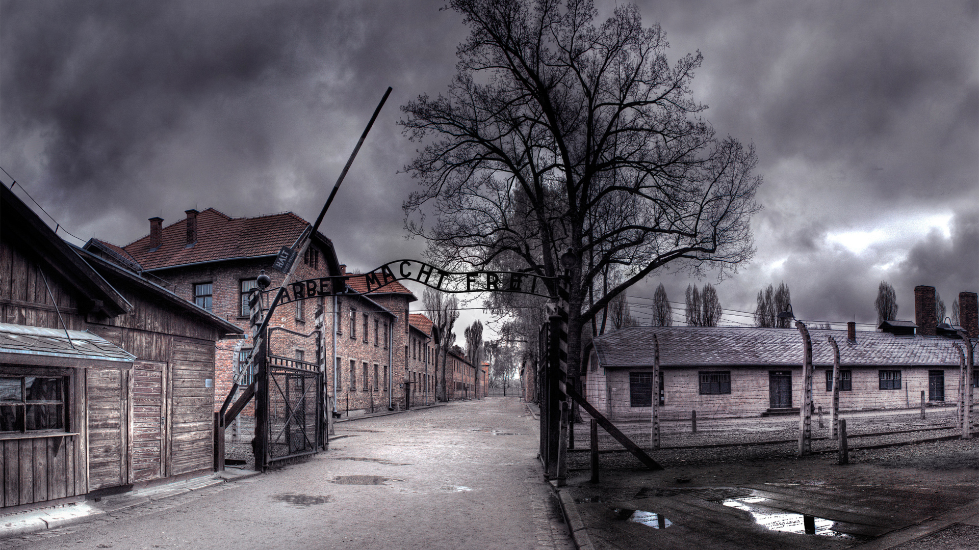 World Youth Day – Auschwitz reflections
